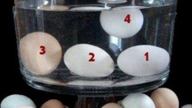 Photo of Πώς καταλαβαίνουμε εάν ένα αυγό είναι φρέσκο