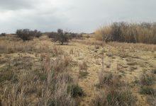 Photo of Λημνος – Άντε εσύ να ξεχωρίσεις σύνορα (φωτογραφία)  για το Κτηματολόγιο…