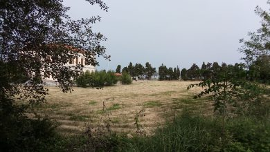Photo of Λημνος – Αντωνιάδειο Οικόπεδο: Μια  μεγάλη αλλαγή στη Λημνο ολόκληρη !