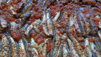 Photo of Τι θα φάμε σήμερα – γαύρος στο φούρνο με σάλτσα ντομάτας και δενδρολίβανο