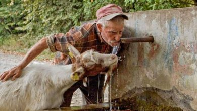 Photo of Διψα και νέρο στις παλιες Βρυσες χωρις αποκλεισμούς