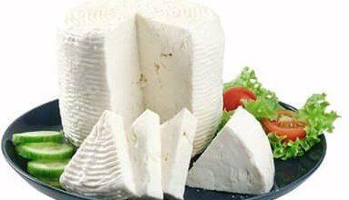 Photo of Καλαθάκι Λήμνου – ένα από τα πιο υγιεινά τρόφιμα !