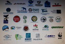 Photo of WWF Ελλάς : Διαμαρτυρία χιλιάδων  και ύστατη έκκληση για προστασία της φύσης