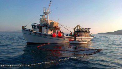 "Photo of Ενα παχύρρευστο ""πράμα"" εμποδίζει το ψάρεμα με δίχτυα…"